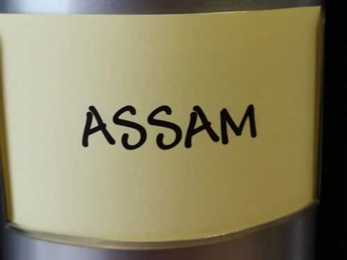 Thé noir Assam en vrac DAMMANN