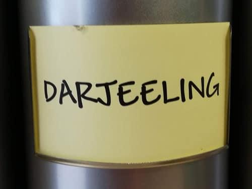 Thé noir Darjeeling en vrac DAMMANN
